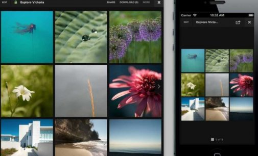 Best Photo-Sharing Apps for Android